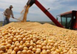 Abiove prevê produção de 101,30 milhões de t de soja em 2017