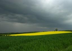Minas Gerais inicia semana com chuva