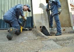 Cachorro fica preso em cano de casa e Bombeiros ajudam no resgate