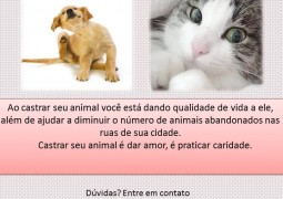 ASPA realizará a segunda Campanha de Castração de Animais em São Gotardo
