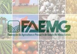 Agronegócio Mineiro fecha 2014 com saldo positivo em ano atípico