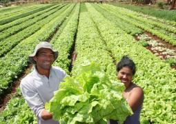 Agricultores familiares recebem R$ 21,8 milhões em janeiro