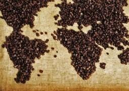 Valorização do café eleva receita das exportações do agronegócio mineiro
