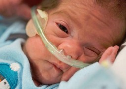 Emocionante: bebê nasce 54 dias após morte cerebral da mãe