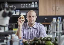 Cientista revoluciona ao encontrar molécula no abacate que combate a leucemia e pretende lançar medicamento em breve