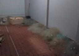 Polícia Ambiental de São Gotardo realiza nova apreensão de peixes e materiais de pesca ilegais no município de Tiros
