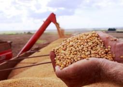Nova metodologia evita desperdício na colheita de soja