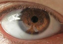 Nova técnica capaz de restaurar a visão de pessoas cegas começará a ser testada!