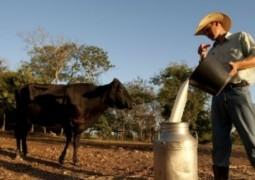 Preço do leite subiu 12,37% em Minas e deve seguir em alta