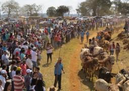 XIV Festival do Carro de Boi é realizado em Matutina