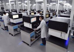 """""""Arca de Noé da China"""": país cria 1º banco de genes com milhões de amostras"""