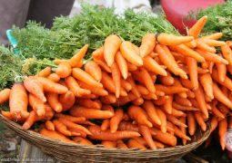 Cenoura e gengibre estão mais em conta, diz Ceagesp