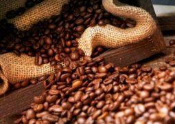 Brasil vendeu menos café aos árabes neste ano até agosto