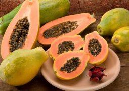 Mamão papaia e alho poró estão mais em conta, diz Ceagesp