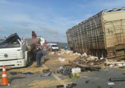 Homem morre em acidente na BR-262 entre Córrego Danta e Campos Altos