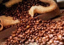 Café: Bolsa de Nova York testa recuperação nesta manhã de 2ª após cair mais de 7% na semana passada