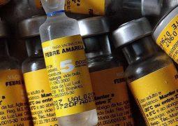 Febre amarela: país chega a 221 casos confirmados, com 76 mortes