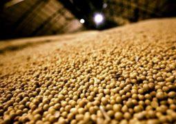 Levantamento da Conab amplia recorde da safra brasileira de grãos