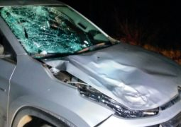 Homem com residência em São Gotardo morre após ser atropelado na BR-365