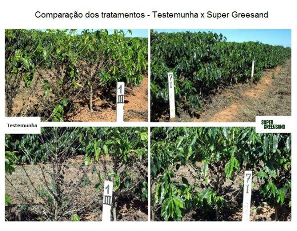 comparação-tratamentos-super-greensand-epamig