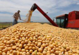 Exportação de soja do Brasil até agosto já supera total registrado em 2016