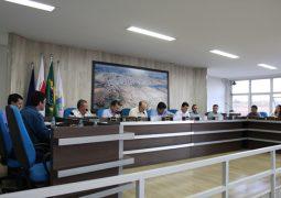 Após mais de 27 anos de sua criação, Lei Orgânica é promulgada por vereadores de São Gotardo