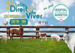 3º Leilão Direito de Viver acontece nesta sexta-feira em São Gotardo