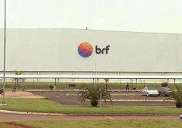 BRF recebe autorização para voltar a exportar carne do frigorífico de Mineiros (GO)