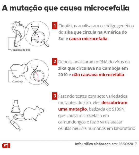 a-mutacao-que-causa-microcefalia