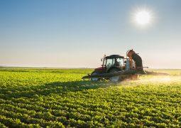 Custos de produção do agronegócio registram queda em setembro, aponta Farsul