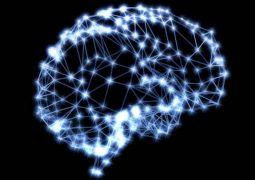 Confira 11 dicas de um cientista para estimular e manter o cérebro saudável