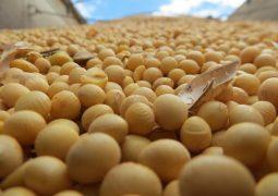 Brasil já embarcou, até outubro, 50 mil toneladas de soja para China