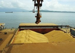 Exportações do agronegócio atingem US$ 7 bi em novembro