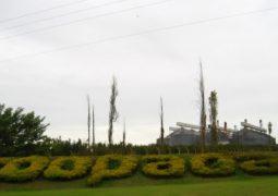 COOPADAP envia nova nota à imprensa a respeito de terras invadidas em Guarda dos Ferreiros