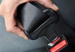 Apenas 7% dos brasileiros usam cinto de segurança no banco de trás, diz pesquisa