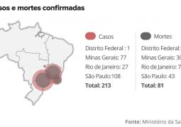 Febre Amarela: Ministro da Saúde diz avaliar vacinação para todo o Brasil