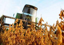 Colheita de soja atinge 65% da área da safra 2017/18 no Brasil
