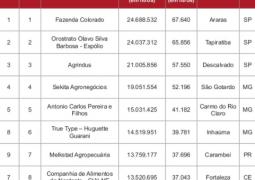 Pelo segundo ano consecutivo, Sekita Agronegócios fica em 4º lugar entre os maiores produtores de leite do Brasil
