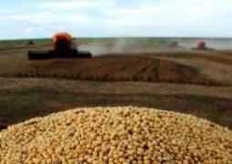 Imea eleva previsão de custo de produção de soja 2018/19