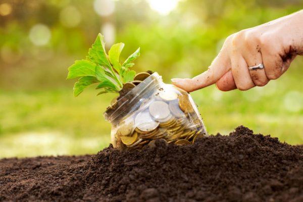 Foto capa: http://blog.perfarm.com/6-custos-que-impactam-o-lucro-agronegocio/