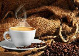 Estudo indica que a forma de preparo do café influencia na formação de substâncias prejudiciais ao organismo