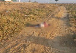 Homem é encontrado morto em Guarda dos Ferreiros