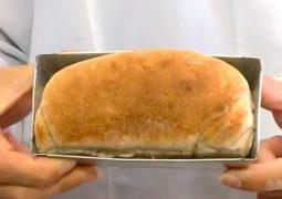 Pesquisadoras brasileiras desenvolvem pão feito com farinha de barata
