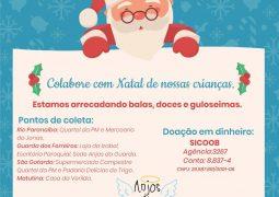 Grupo Anjos da Guarda iniciam campanha de arrecadação para Festa de Natal para crianças de Guarda dos Ferreiros
