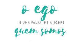 Ego: Uma falsa ideia sobre quem somos!