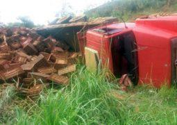Caminhão carregado de cenouras tomba na MG-235 em São Gotardo