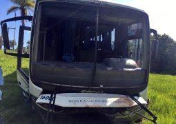 MGC-352: Ônibus da linha Tiros/São Gotardo sai da pista e só para em vegetação