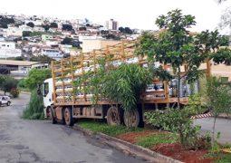 Caminhão carregado com botijões de gás se descontrola e parte da carga desce em morro em São Gotardo
