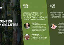 Encontro de Gigantes: Aprenda como aumentar em até 70% a produtividade dos plantios comerciais de eucalipto