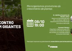 Saiba quais são os microrganismos promotores do crescimento de plantas e o seu papel no aumento sustentável da produtividade agrícola